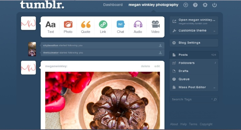Tumblr Interface