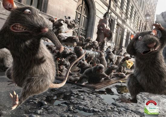 Dulcolax - Rats