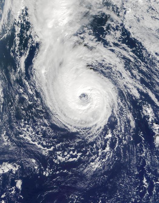 Hurricane Epsilon LNU0102550