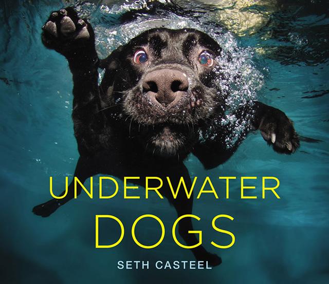 Seth Casteel Cover2