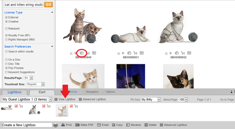 Using the lightbox tool while you search to keep track of the photos you like.