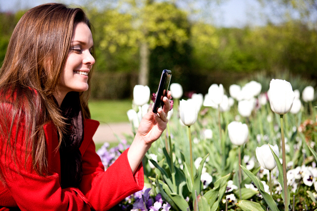 A young woman photographing flowers with her phone LUV0014257 | Media Bakery - See more at: http://www.mediabakery.com/stock-photo/LUV0014257/A-young-woman-photographing-flowers-with-her-phone.html#sthash.4dJXPY1d.dpuf