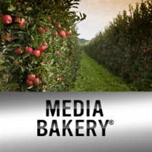 Media Bakery Free Images