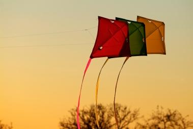 Media Bakery: STB0148238 kites on evening sky