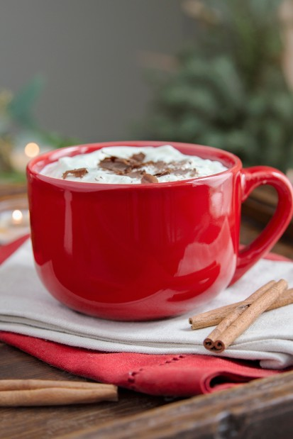 Media Bakery ID: FAN0075477 Hot chocolate with cream and cinnamon