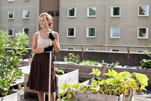 Media Bakery ID: MSK0004389Happy young woman looking away while standing at urban garden