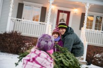 Media Bakery ID: FAN0077367 Children and father pulling Christmas tree into house